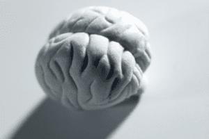 Old Dogs New Tricks Epigenetics Neuroplasty brain change Dr Sarah Sarkis